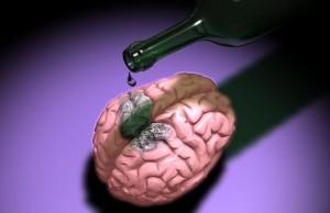 алкоголь мозг клетки