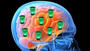 как алкоголь влияет на мозг и его работу