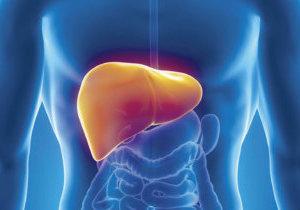 алкогольный гепатоз печени лечение