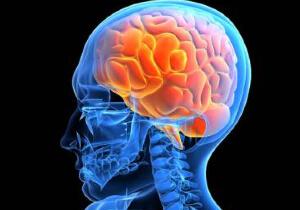 Можно ли употреблять спиртное при сотрясении мозга?
